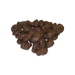 Chocolate Covered Cashews - 14 oz -06133