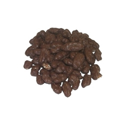 Chocolate Covered Pecans - 11 oz - 06130